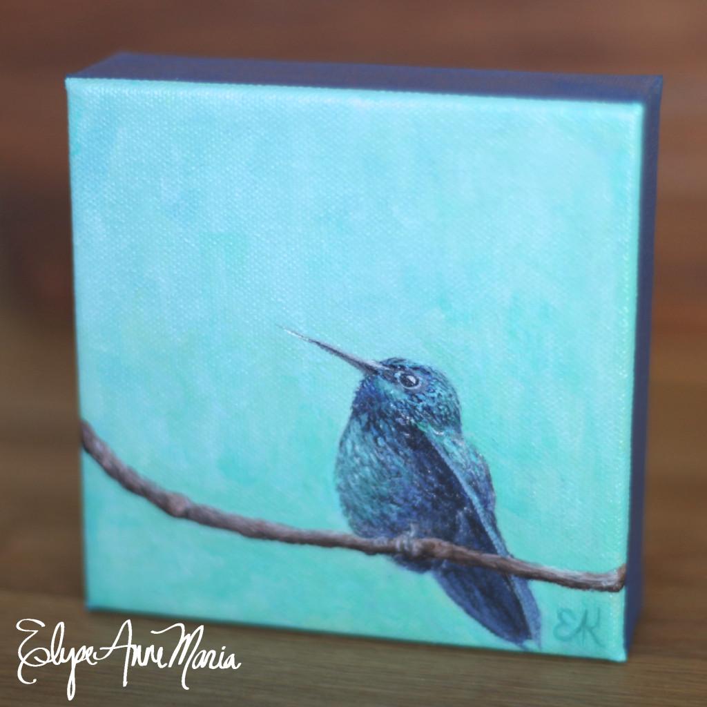Hummingbirdbluebranch4