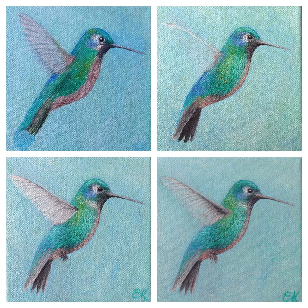Blue:greenhummingbirdprogress