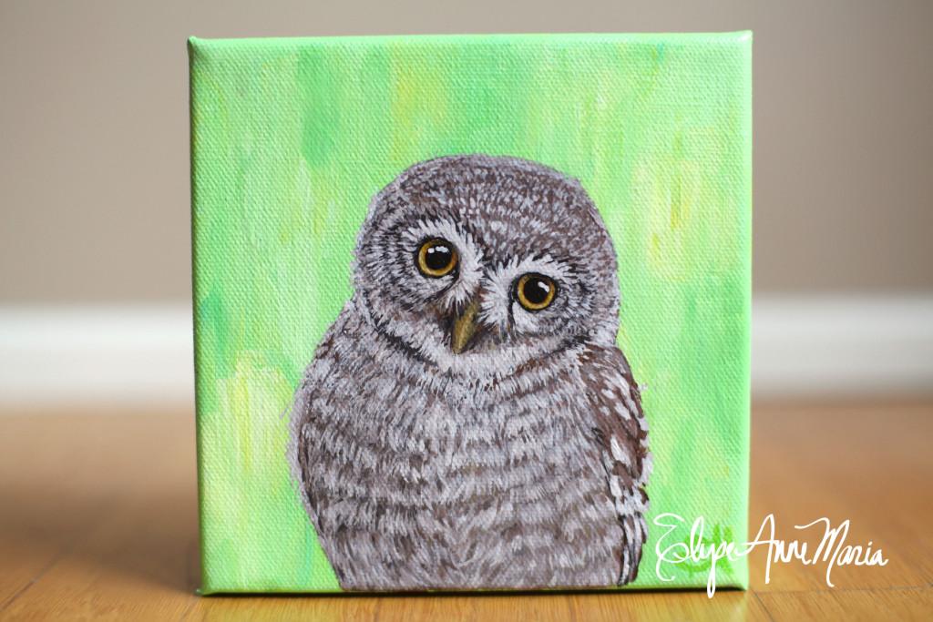 Owl5-1