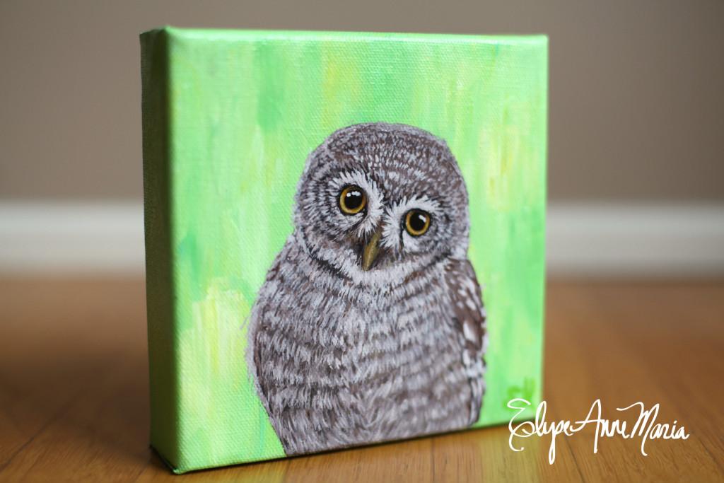 Owl5-2
