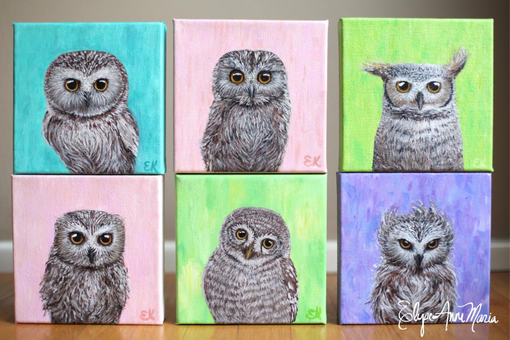Owls2-6