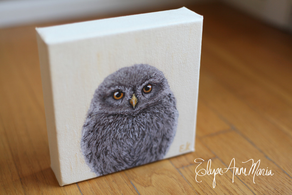 Owl7-3