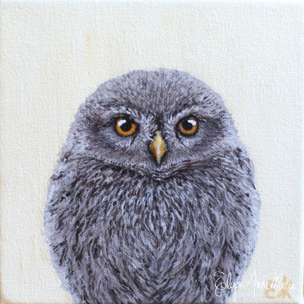 Owl7-4