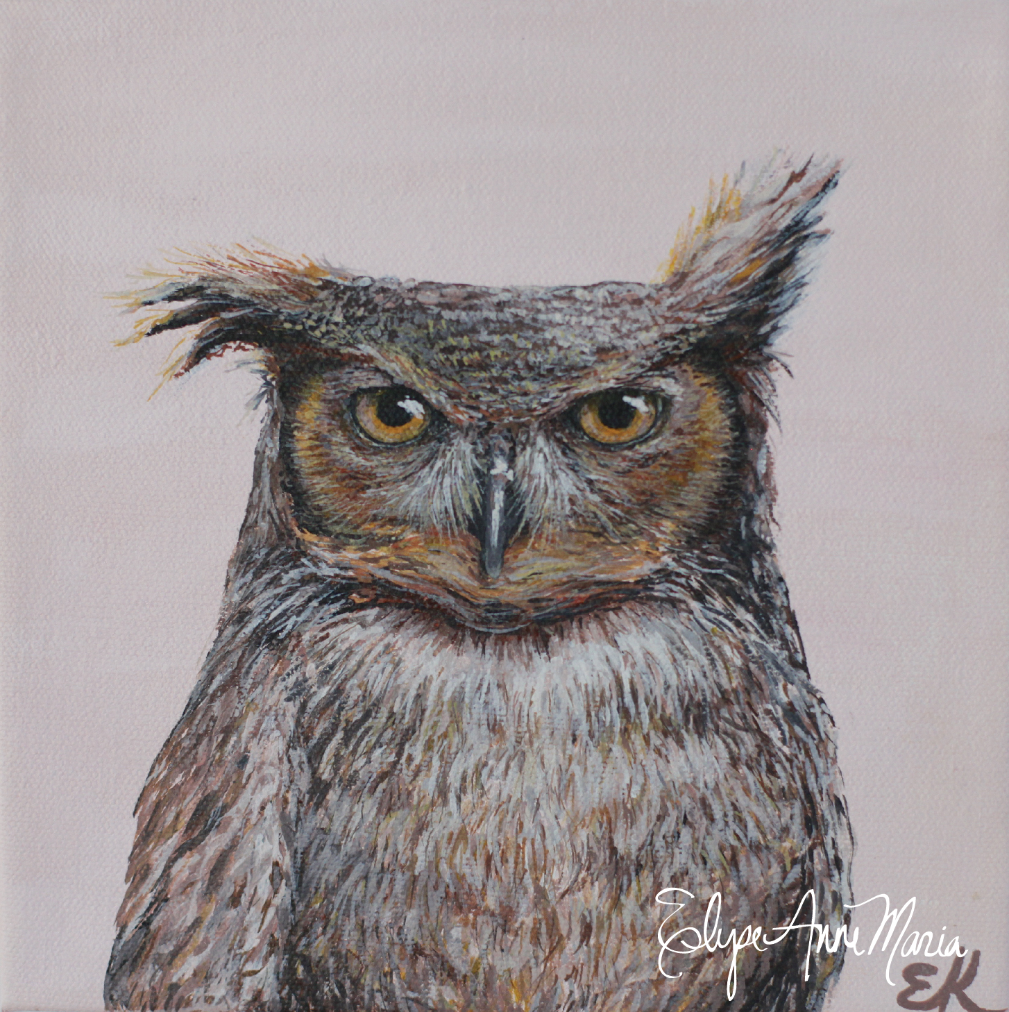 owl8x8-5